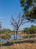 African landscape and river in UAR, Kruger's park Stock Image