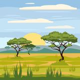 African landscape, savannah, nature, trees, wilderness Stock Photos