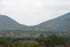AFRICAN LANDSCAPE WITH SLOPING HILLS AND VEGETATION. View of hill covered with vegetation with green trees in the foreground in an African landscape under an Royalty Free Stock Photography