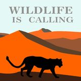 African landscape with tiger. Vector. Illustration.desert wildlife Royalty Free Stock Photo