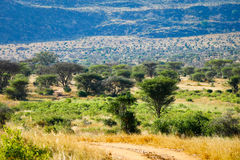 African landscape. In tsavo Kenia Stock Photos