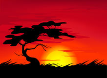 African landscape vector Stock Images