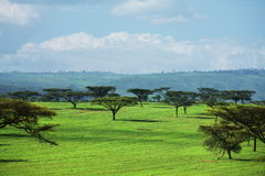 African landscapes Stock Photos