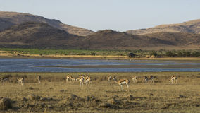 African Landscapes Stock Images