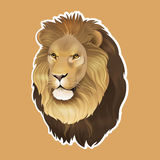 African lion sticker Royalty Free Stock Photography