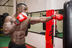 African male boxer punching ball wearing boxing Royalty Free Stock Photos