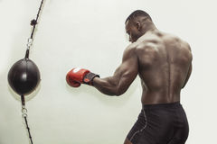 African male boxer punching ball wearing boxing gloves. Back profile view Royalty Free Stock Images