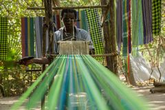 An african male performing traditional weaving in Gambia. An african male shows traditional weaving in Makasutu forest, The Gambia, Africa royalty free stock image