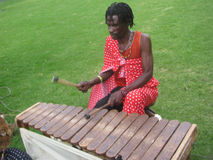 African man  playing traditional xylophone Royalty Free Stock Photo