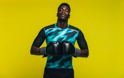 Fit male boxer. African man in sportswear with boxing gloves looking at camera against yellow background. Fit young male boxer royalty free stock photography
