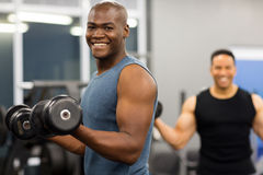African man working out. Healthy african men working out with dumbbells in gym Stock Photography