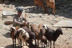 African market of Debark in Ethiopia Stock Photography