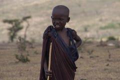 African masai boy herd Royalty Free Stock Photos