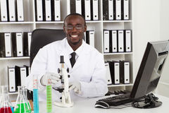 African medical scientist. African american medical scientist wearing lab coat with microscope and test tubes in laboratory Royalty Free Stock Photo