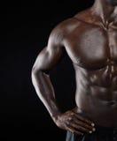 African muscular man body Stock Image