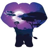 African Night with Elephant Royalty Free Stock Photography