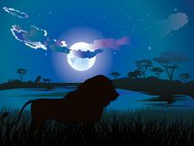 African Night with Lion Royalty Free Stock Photography