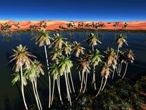 African oasis Stock Photos