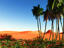 African oasis Royalty Free Stock Images