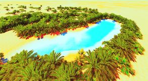 African oasis Royalty Free Stock Image