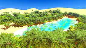 African oasis on Sahara Royalty Free Stock Images