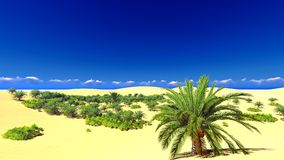 African oasis on Sahara Royalty Free Stock Photography