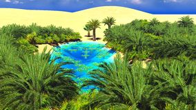 African oasis on Sahara Stock Photos
