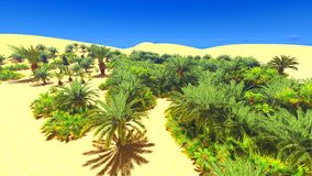 African oasis on Sahara Stock Image