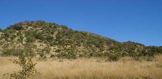 African Park hills Stock Photography