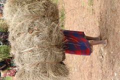 African peasant carrying hay Stock Photos