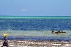 African people working in Zanzibar, Tanzania. African people pulls a full boat in water. Woman walking on the beach Zanzibar island, Tanzania Royalty Free Stock Image