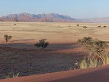 Namibian savanna Desert wild landscape. African picture of savanna and desert. Namibian desert with far away mountains Royalty Free Stock Image