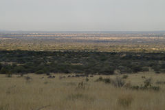 The African plain. African Plain near Pilanusberg South Africa stock image