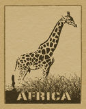 African poster Royalty Free Stock Photos