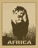 African poster. Africa image with lion silhouette royalty free stock photos