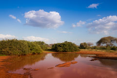 African red earth landscape Royalty Free Stock Photo