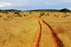 African red ground road. African savannah landscape with red ground dusty road in Tsavo East National Park, Kenya Royalty Free Stock Images