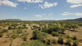 African rift valley savannah bush landscape in dry season on hot sunny windy day stock video footage
