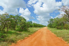 African road in savannah, South Africa Royalty Free Stock Photography