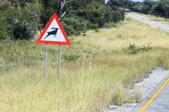 African road sign with the image of the animal - antelope on the road stock images