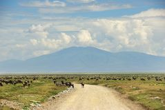 African road in Tanzania, Africa Royalty Free Stock Image