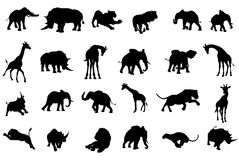 African Safari Animals Silhouettes. A safari African animal silhouette set including elephants, giraffes, rhinos and lions Stock Photos