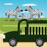 African safari design. Zebras and safari car icon over africa jungles landscape colorful design vector illustration Stock Photography