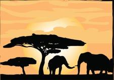 African Safari Elephants. With trees silhouettes Vector Stock Photos