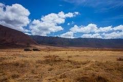 African safari in the Ngorongoro area Stock Photos