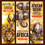African safari outdoor adventure sketch banner set. African safari wild animal, outdoor adventure banner set. Elephant, lion, crocodile, alligator, rhino Stock Image