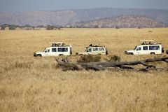 African safari Royalty Free Stock Photography