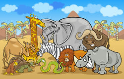 African safari wild animals cartoon illustration Royalty Free Stock Photos