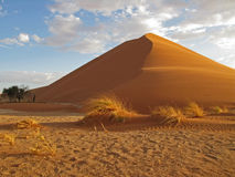African sand dune. A sand dune at Sossusvlei Namibia rises from the desert Royalty Free Stock Photo