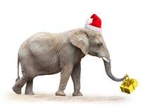 African Santa. Stock Photos